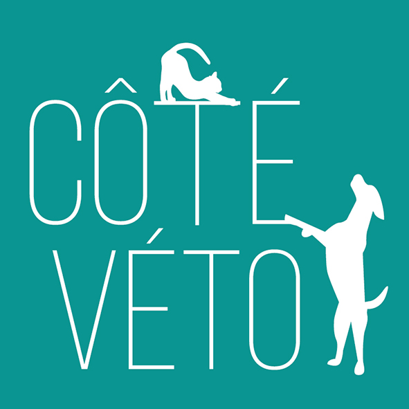 Clinique vétérinaire Côté Véto